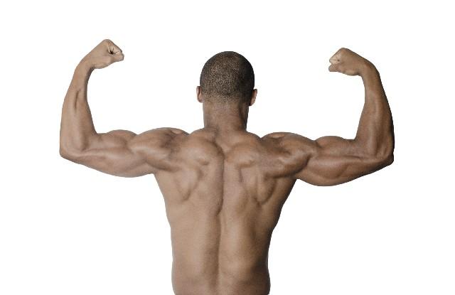 背中が筋肉痛にならないようにする効果的なストレッチ法は?