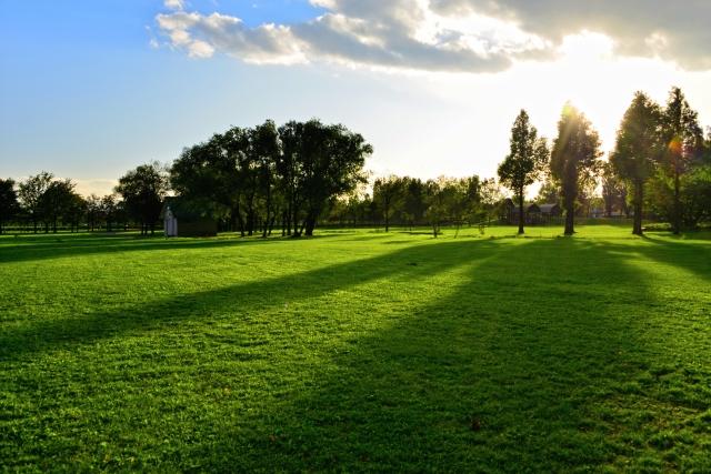 同じ日本と思えない!北海道のゴルフ場の芝が一番良い時
