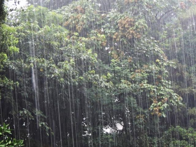 【ゴルフの悩み】雨の日の様々な打ち方とコースマネジメント