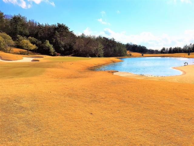 ゴルフ場の芝を緑色に着色しているのは何故?理由に納得