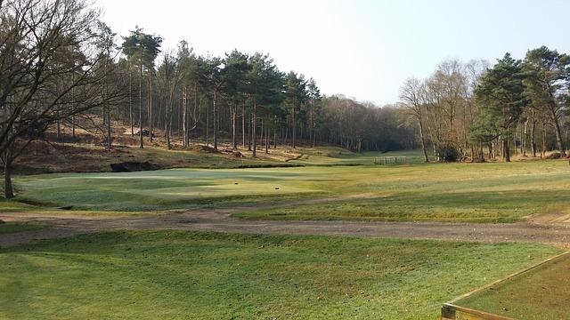 冬はコースの芝が枯れるのでグリーン周りゴルフが難しくなる