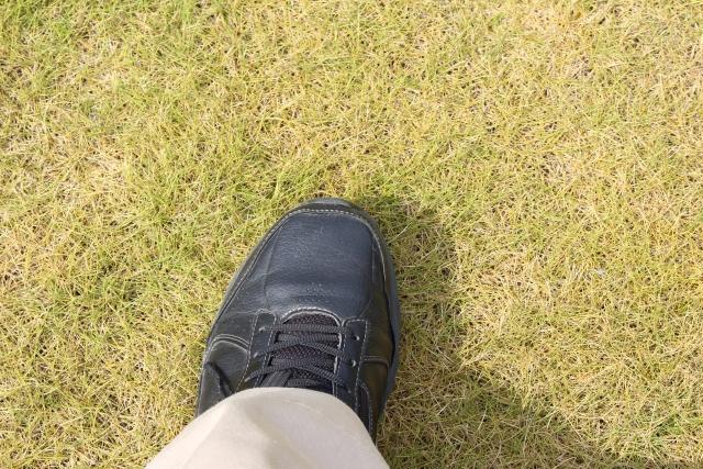 ゴルフの服装で迷ったら白と黒のシックなカラーにしよう!
